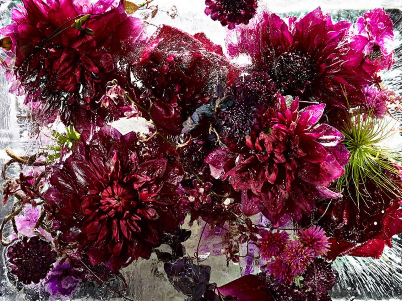 Необыкновенно красивые цветы в фото