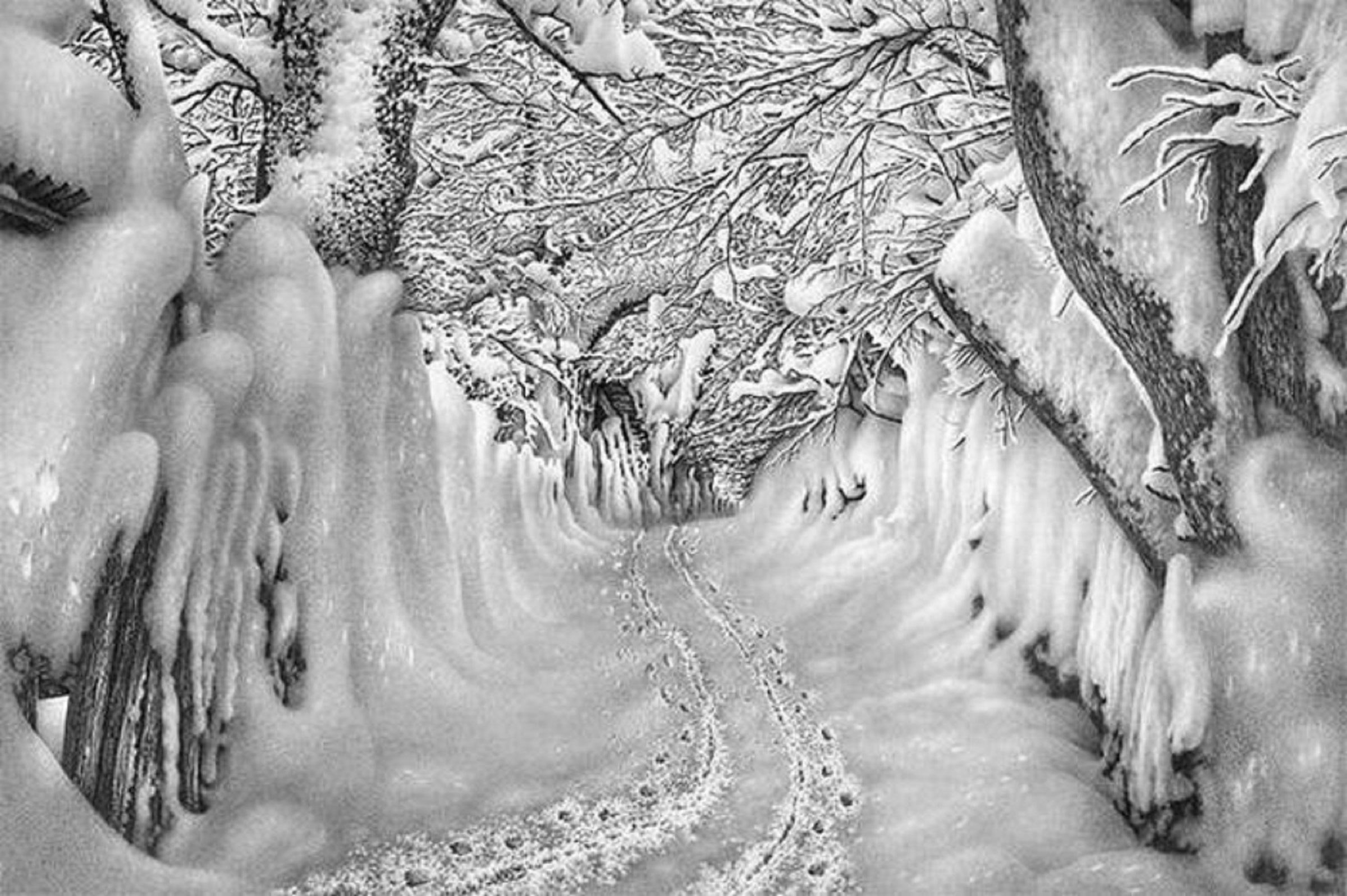 карандашные картинки зимы тоже уверены, что